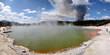 Waldbrand im Wai-o-Tapu Geothermal Gebiet