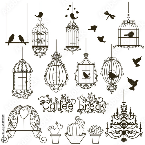 Printed kitchen splashbacks Birds in cages Birdcage set.
