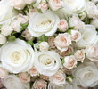 canvas print picture - Wedding bouquet of pinkand white  roses