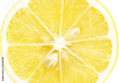 Aluminium Prints Slices of fruit Single cross section of lemon. Isolated on white background. Clo