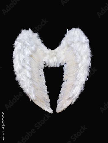 Fotografia, Obraz  White angel wings
