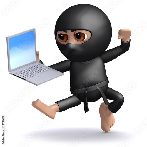 Photo  3d Ninja is getting to grips with his new computer
