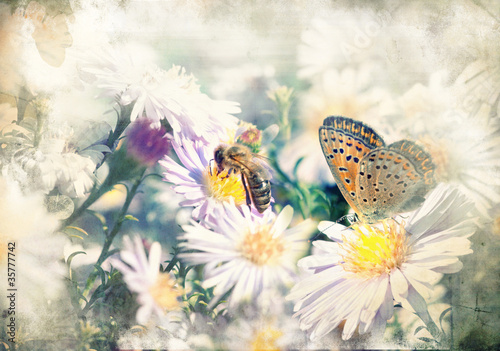 Foto op Aluminium Vlinders in Grunge Butterfly on the flower - picture in retro style