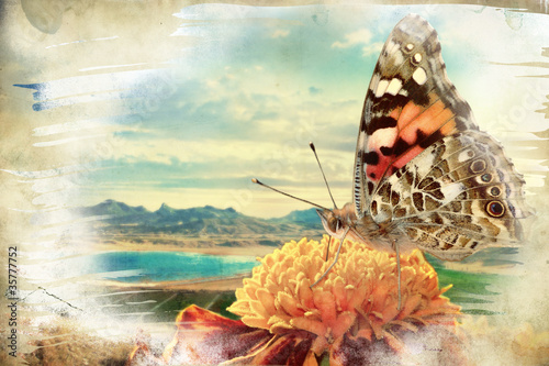Foto op Plexiglas Vlinders in Grunge Butterfly on the flower - picture in retro style