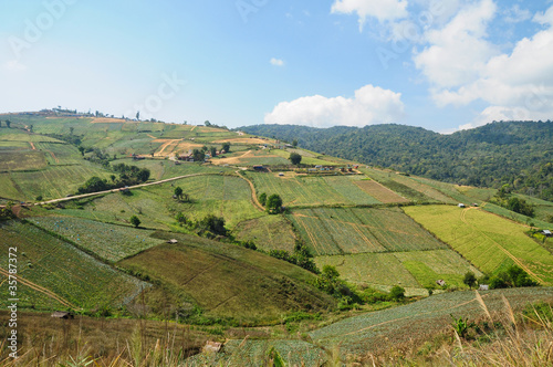 Fotografija  Mountain landscape and farm in Thailand