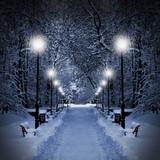 Am Weihnachtsabend – Magie der Weihnachten