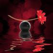 Leinwandbild Motiv Equilibre zen, fond noir