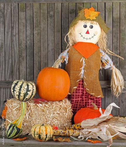 Photo Fall Harvest