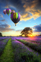 Hot Air Balloons Flying Over L...