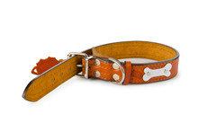 Dog Collar Isolated On The Whi...