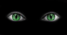 Yeux Verts Catwoman - Fond Noir
