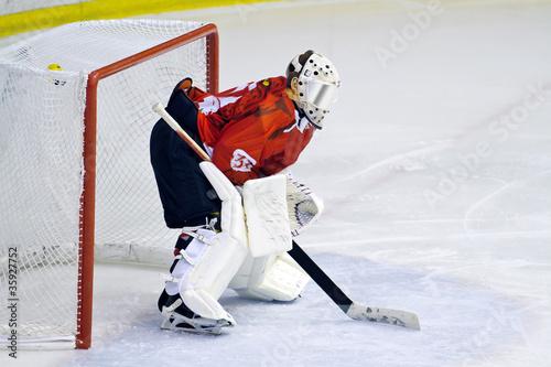 portiere hockey su ghiaccio Canvas Print