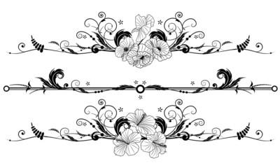 zestaw tle kwiatów z hibiskusa i maku