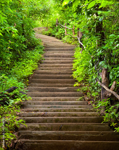 Naklejki na lodówkę schody-do-lasu