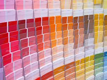 Colorful Paint Samples