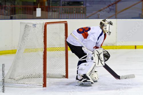 Cuadros en Lienzo hockey goalie