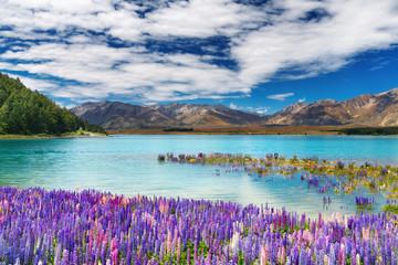 Fototapeta Rzeki i Jeziora Lake Tekapo, New Zealand