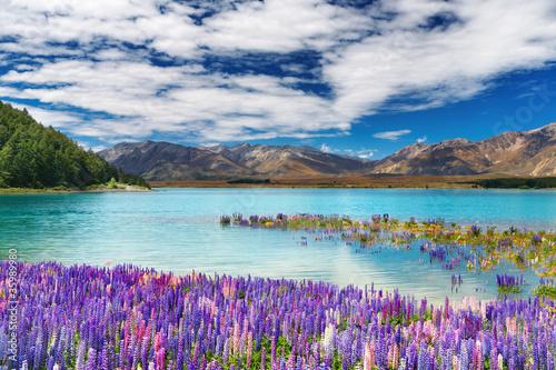 Lake Tekapo, New Zealand - 35989980