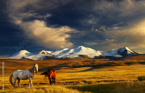 Photo  Mountain landscape