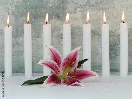 Akustikstoff - Lilienblüte und 7 Kerzen