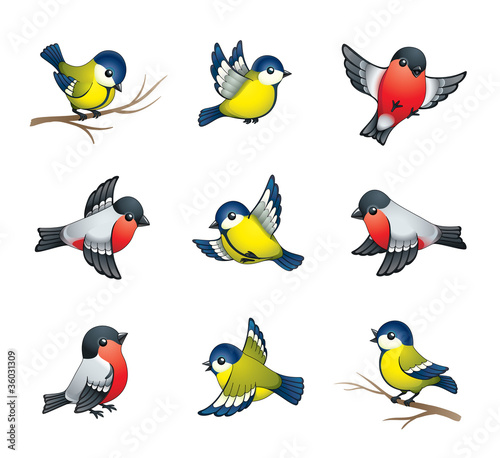 Poster Vogels, bijen Winter Birds Illustration