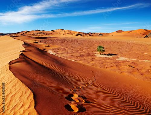 Fotobehang Zandwoestijn Sahara Desert, Algeria