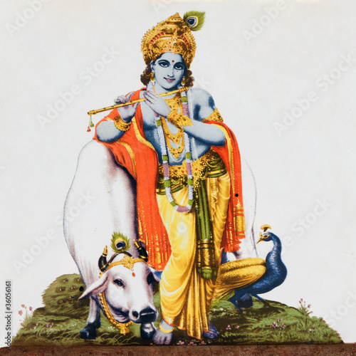 image of hindu god  Krishna with cow, peacock , flute