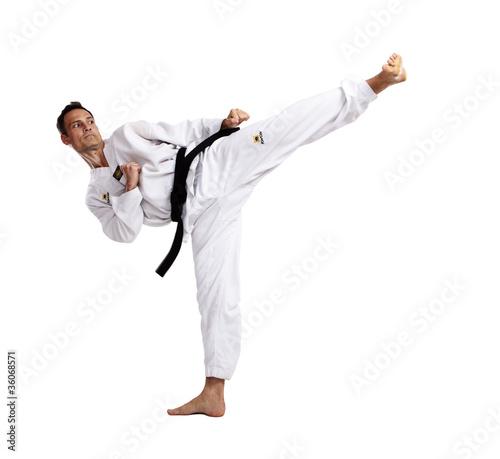 Taekwondo, Sidekick, vor weiß Canvas Print