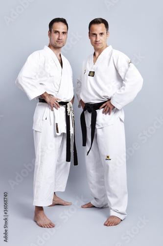 Vs belts karate taekwondo TaeKwonDo Vs