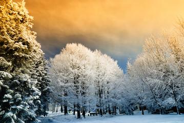 Fototapetasunset in mountain with orange sky