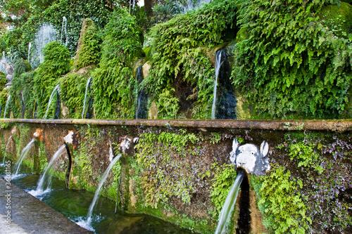 Fotografie, Obraz  Villa d'Este - Tivoli