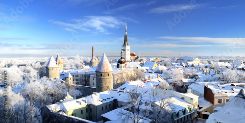 Fotomural  Tallinn city. Estonia. Snow on trees in winter, panoram view