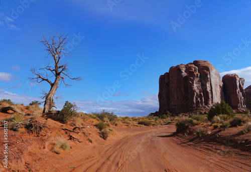 Poster Parc Naturel Beautiful landscape of Monument Valley, USA