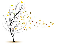 Decorative Vector Tree Silhoue...