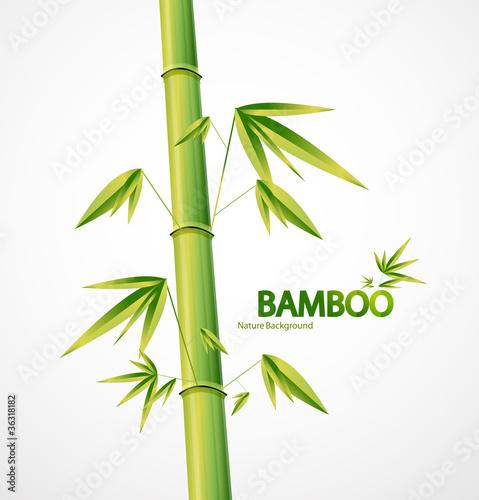 bambusowego-trzonu-natury-abstrakcjonistyczny-tlo