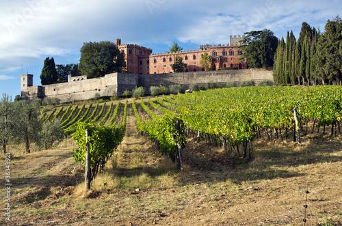 Foto  Toscana, Chianti: vigne e  Castello di Brolio