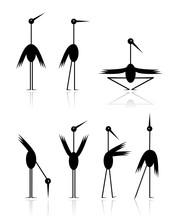 Funny Storks Collection For Your Design