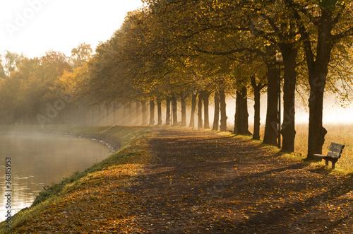 chodnik-w-kanale-mglisty-poranek