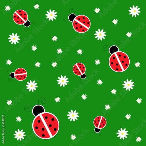 Poster de jardin Coccinelles Ladybugs on Grass