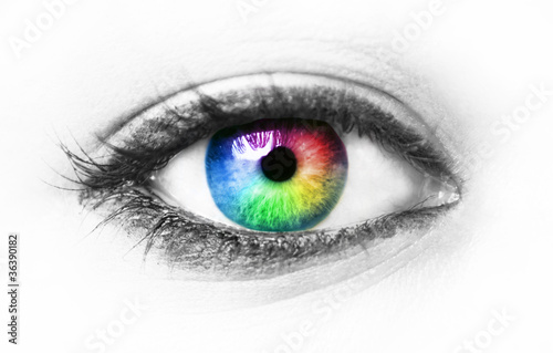 Foto auf AluDibond Iris Colorful eye