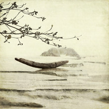 Fishing Boat And Almond Tree Art Background