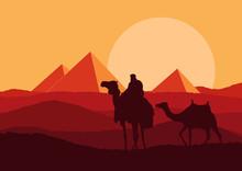 Camel Caravan In Wild Africa P...