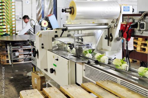Staande foto Industrial geb. Verpackungsmaschine Lebensmittelindustrie
