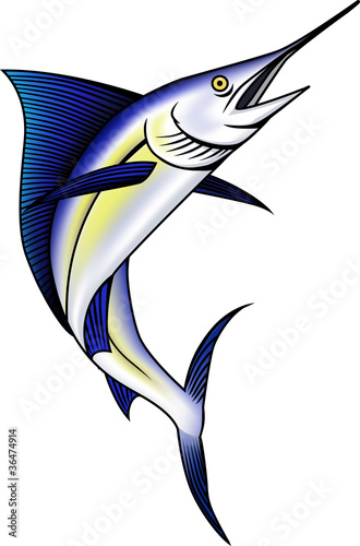 Photo  Marlin fish