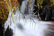 Icicles Over Creek