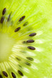 Kiwi seed closeup