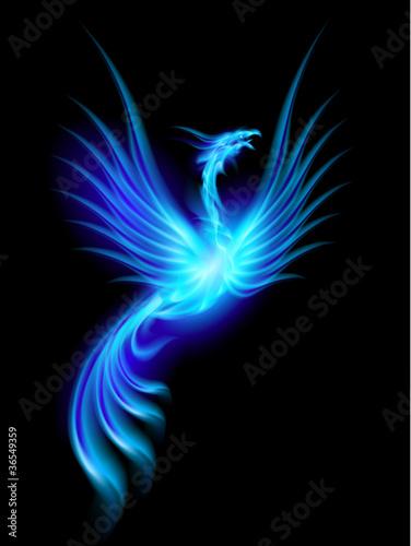 Stampa su Tela Burning phoenix