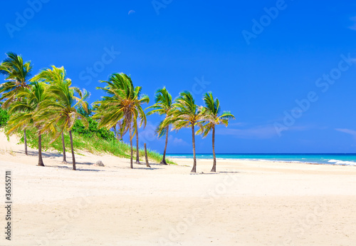 Photo Stands Caribbean The famous Varadero beach in Cuba