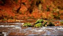 Mossy Rock In Creek
