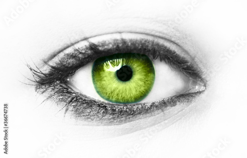 Fototapeta Green eye isolated obraz